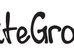 Recensione Siteground Hosting