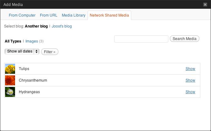 Come ottenere l'URL delle immagini caricate su WordPress